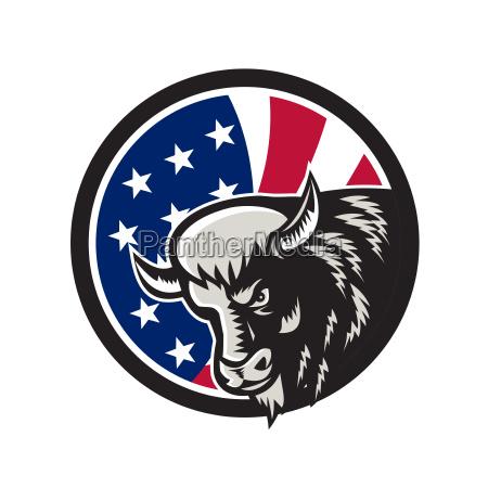 american buffalo usa flag icon