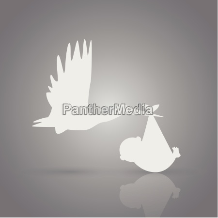 baby stork illustration