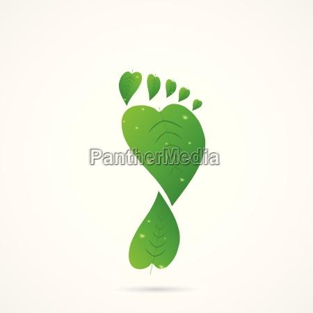 leaf footprint illustration