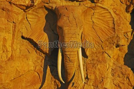 stone animal tourism africa elephant animals