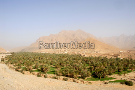 mountains africa haze palms oasis north