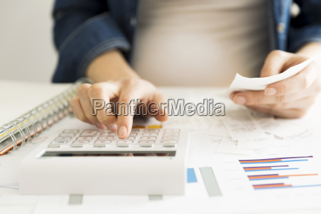 accountant financial inspector and making report