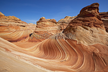 the wave wave of rock coyote