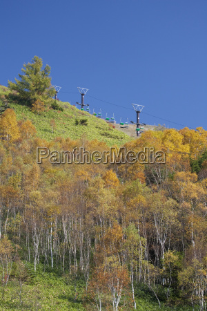 autumn landscape shiga kogen or shiga