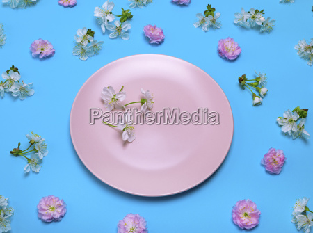 pink plate on a blue background