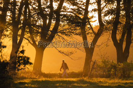 lone man walking in natural scenery