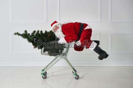 happy santa claus carrying christmas tree