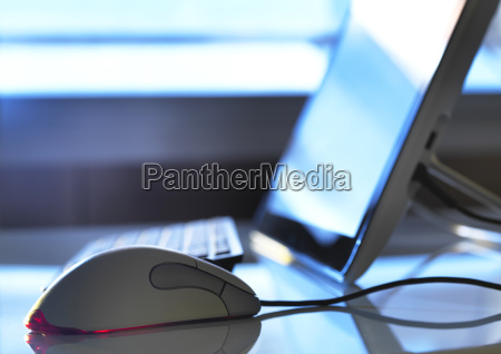 detail of computer mouse with computer