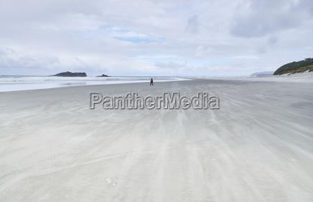 new zealand south island dunedin otago