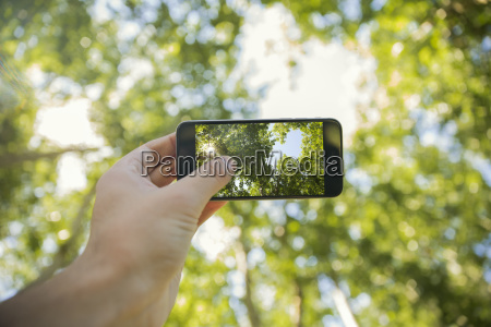 man taking photos will cell phone