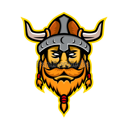 viking warrior or norse raider head