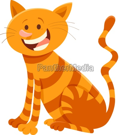 cute cat cartoon animal character