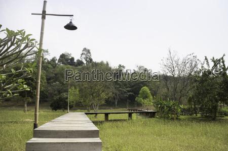 wooden walkway to tropical garden