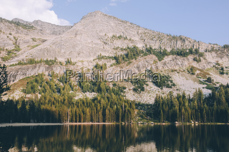 scenic view of lake by trees