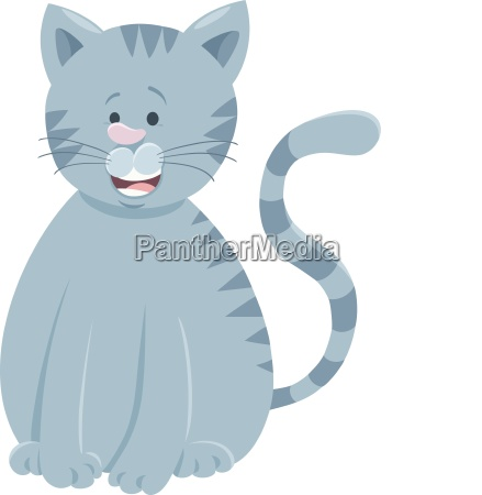 funny gray cat cartoon animal character