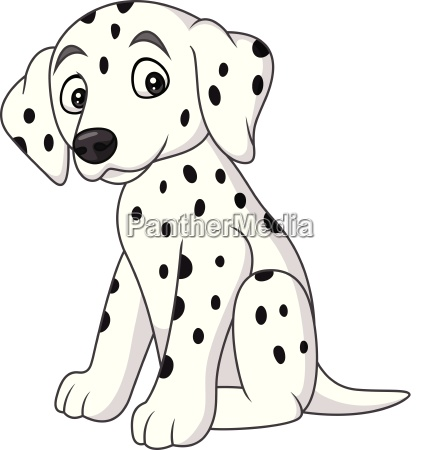 baby dalmatian dog breed