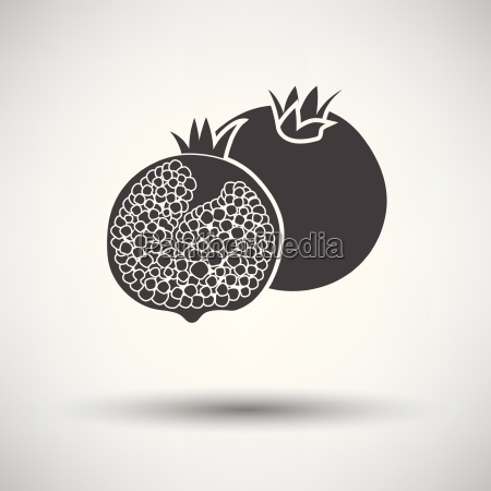 pomegranate icon on gray background