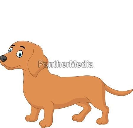 cartoon happy dachshund dog