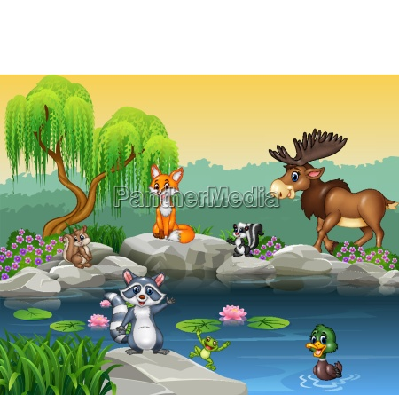 cartoon funny animal collection on the