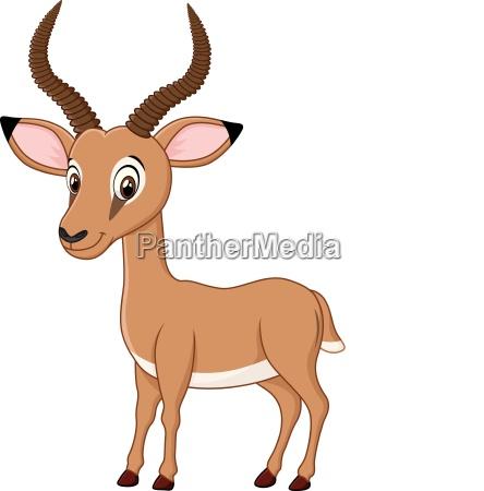 cartoon funny impala isolated on white
