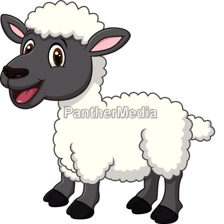 cartoon funny sheep posing isolated on