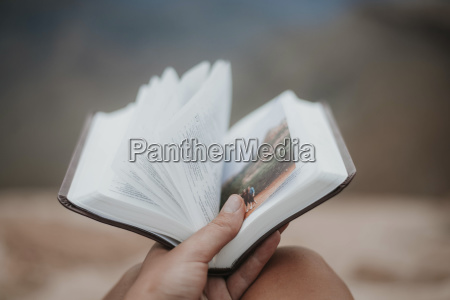cropped hand of woman holding book
