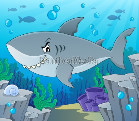 shark, topic, image, 2 - 24947340
