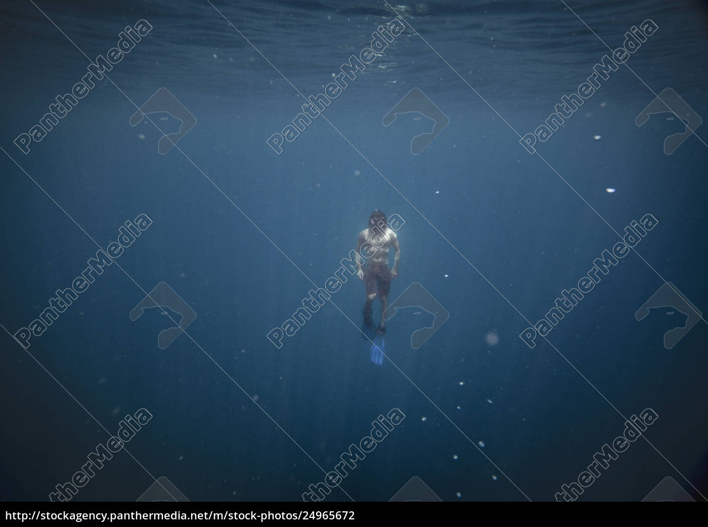front, view, of, man, swimming, in - 24965672
