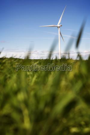 wind turbine on grassy field against