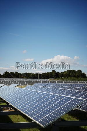 solar panels on field against blue