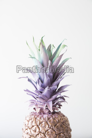 painted pineapple against white background