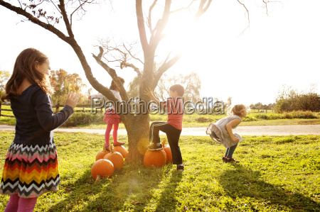 children enjoying at grassy field on