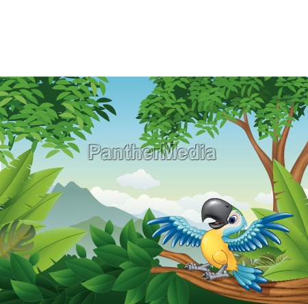 cartoon toucan in the jungle