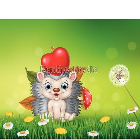 cute little hedgehog in the beautiful