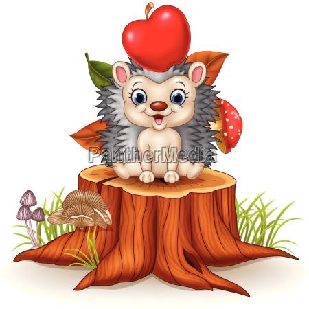 happy little hedgehog sitting on tree
