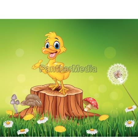 cartoon funny duck presenting on tree