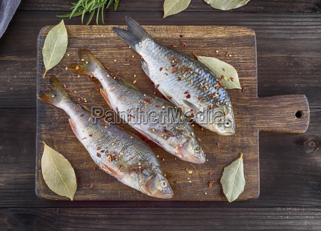 river fish crucian and perch in