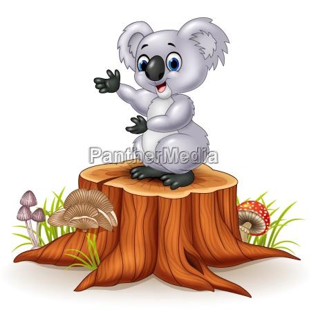 cartoon koala presenting on tree stump