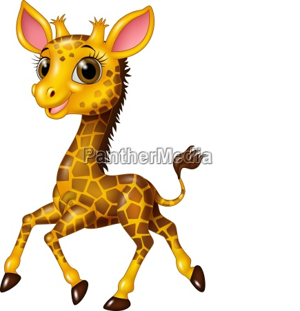 cartoon baby giraffe running isolated on