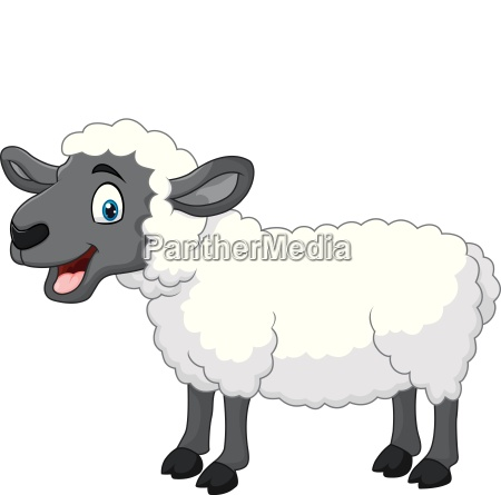 cartoon happy sheep posing isolated on