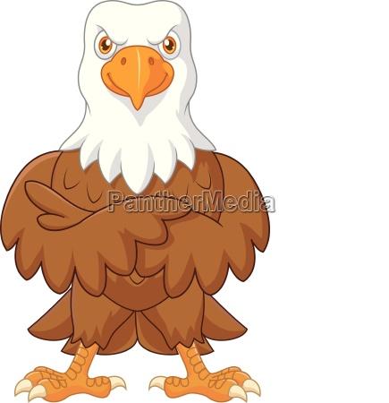 cute eagle cartoon posing isolated on