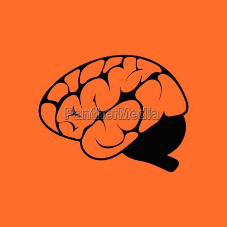 brain, icon - 25102228