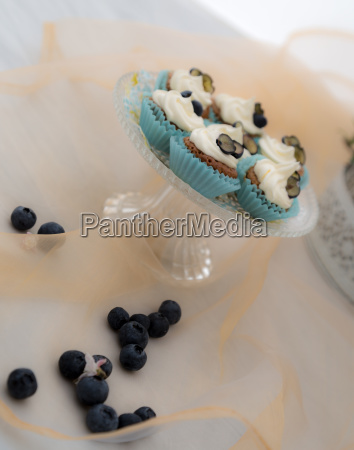 summerly cupcakes