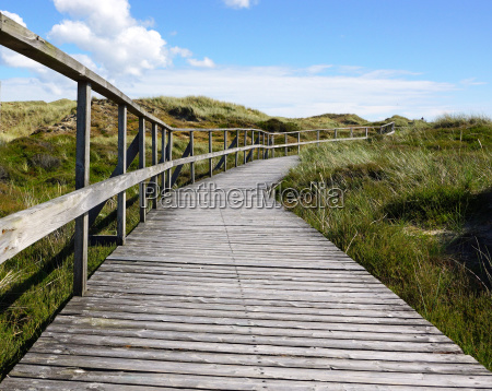 hiking trail in the dunes by