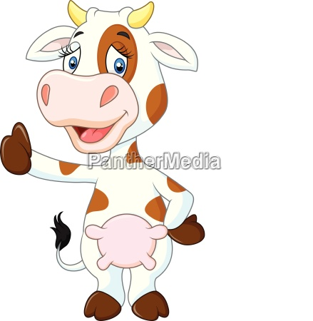 happy cow giving thumb up isolated