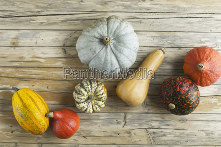 different pumpkins on wood