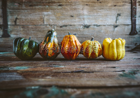 row of five ornamental pumpkins on