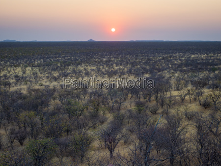 africa namibia damaraland sunset over scrubland