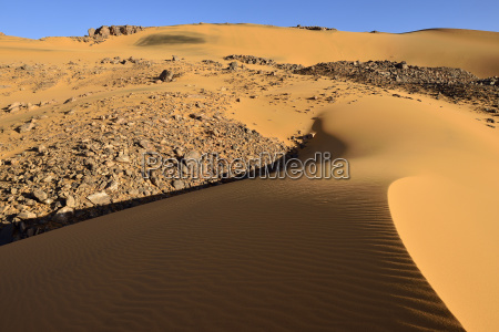 dunes noires sand dunes on tadrart