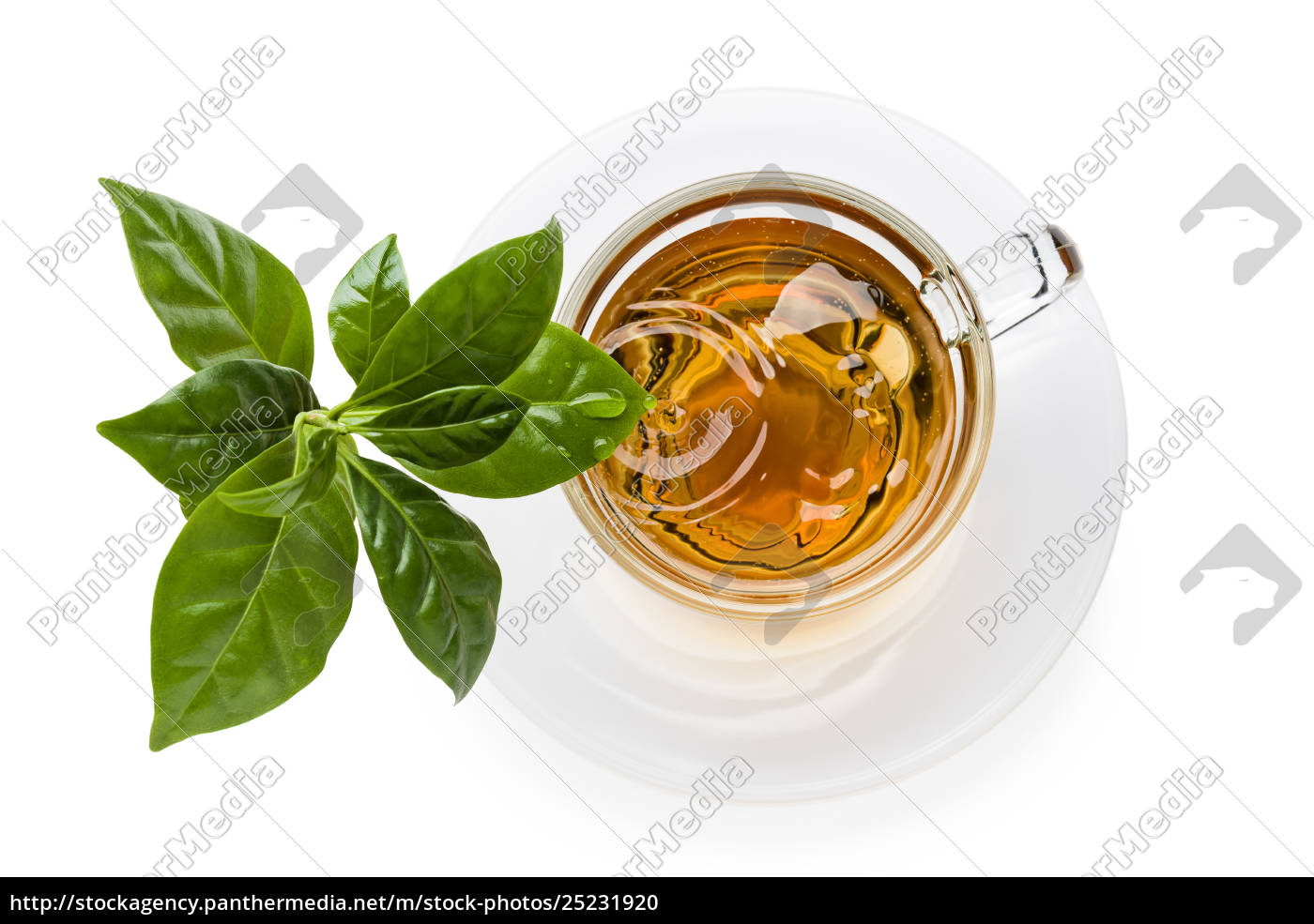 cup, of, tea - 25231920